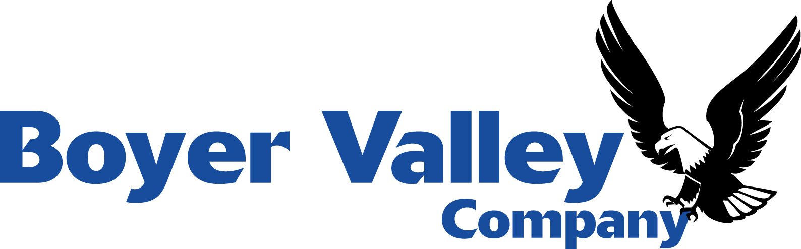 Boyer Valley logo.jpg